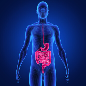 Gastrointestinal oncology